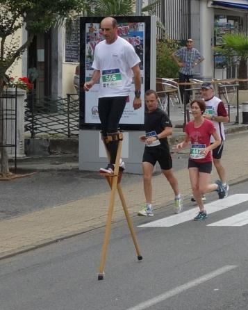 L'échassier, seul à courir dans sa catégorie