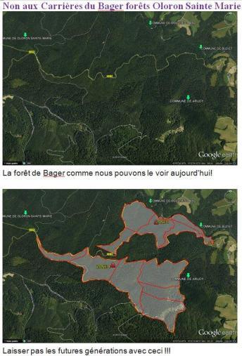 Forêt du Bager