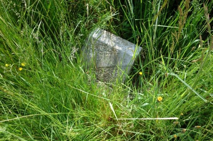 Le coin des poètes - la plaque d'Auguste Peyré