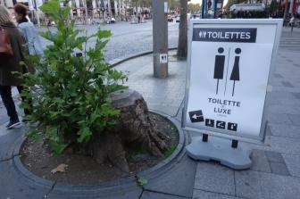 toilettes-de-luxe