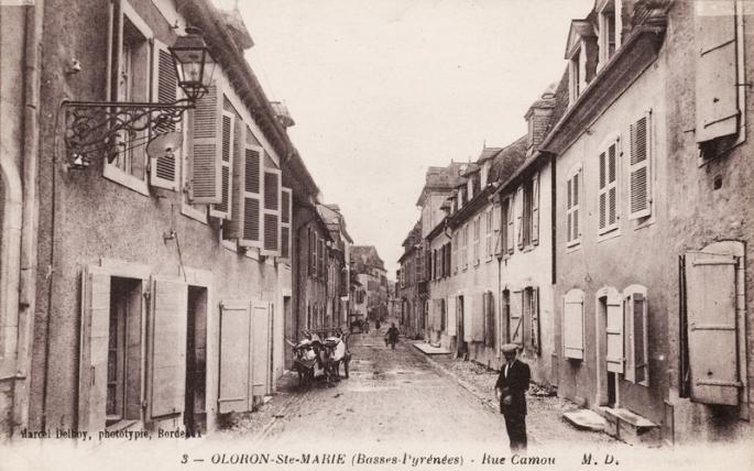 rue-camou