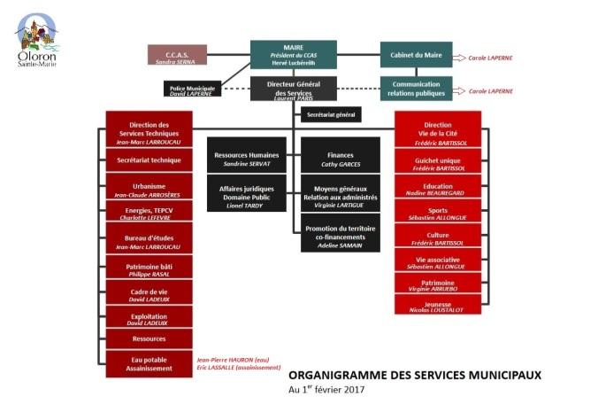 Organigramme des services - Copie