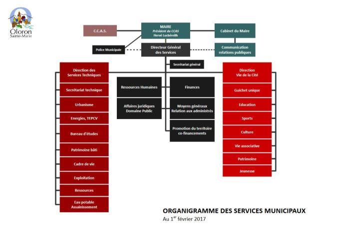 Organigramme des services