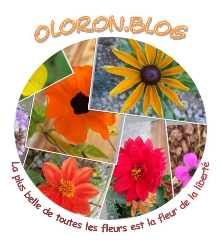 Oloron.blog