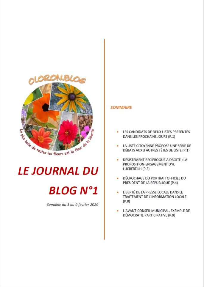 Le Journal du blog n°1
